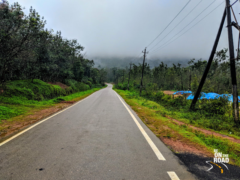 Tropical forests, mist clouds and an open road for company