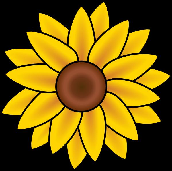 11954459581545234sunflower_aurore_d