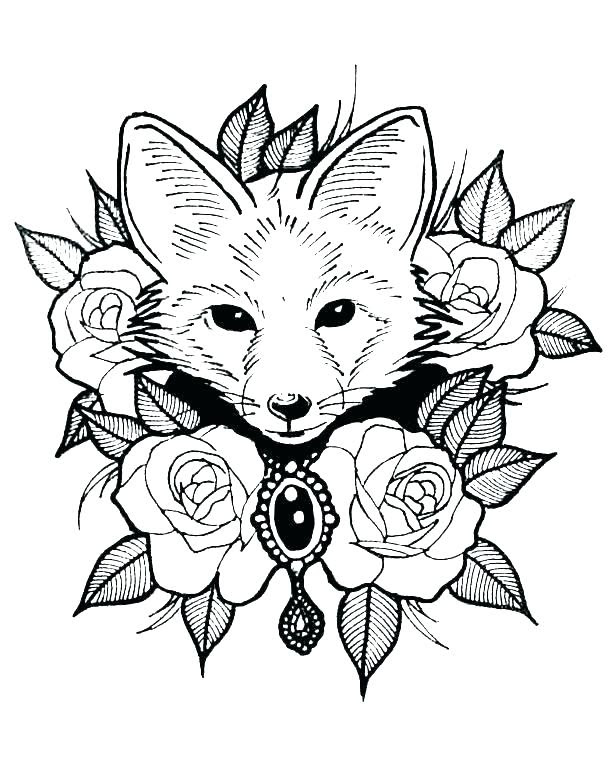 Animal Colouring Pages Hard Coloring And Drawing