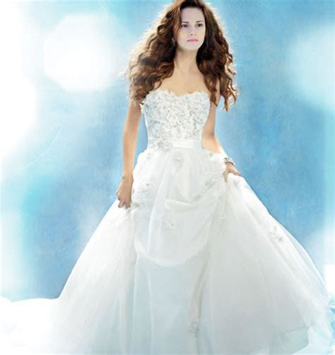 Twilight's Bella Swan Wedding Dress By Carolina Herrera