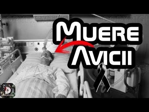 Fallece El Famoso Dj Avicii A Sus 28 Años