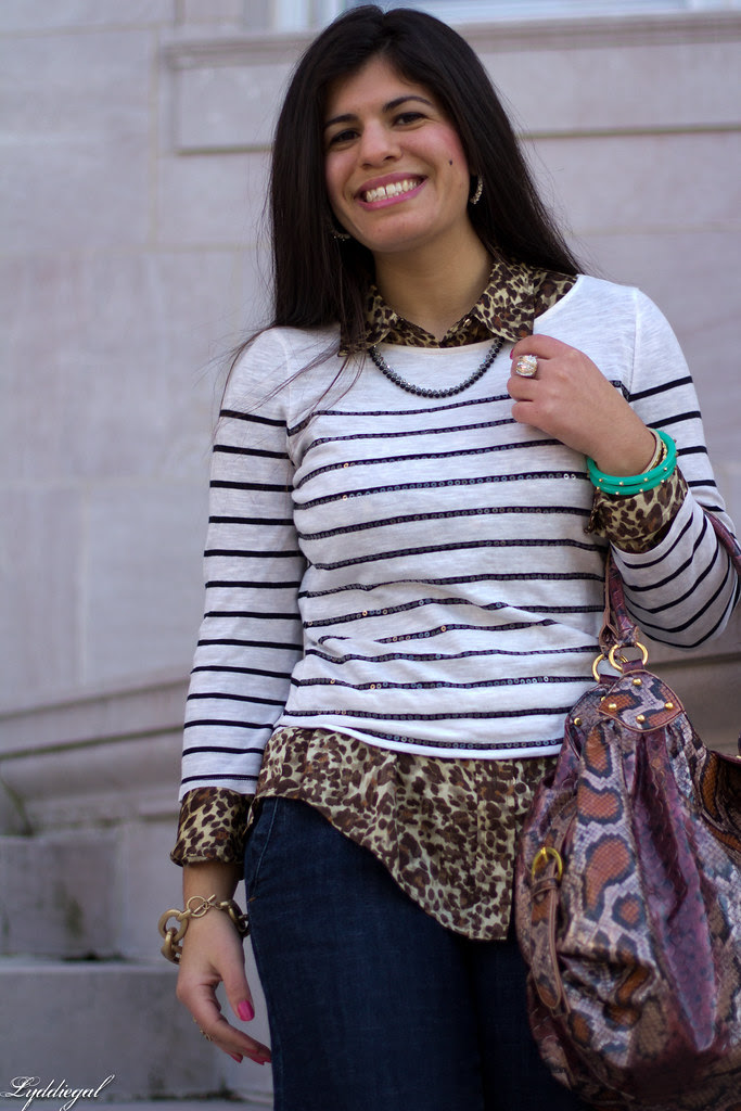 stripes over leopard-6.jpg