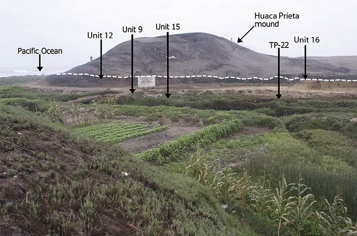 Montículo de Huaca Prieta. Las flechas indican el lugar de los diferentes hallazgos.