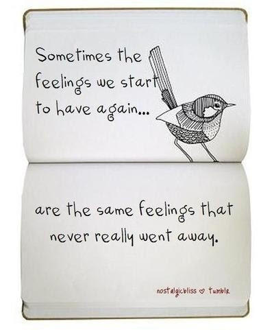 Sometimes The Feelings We Start To Have Again Birds Quote