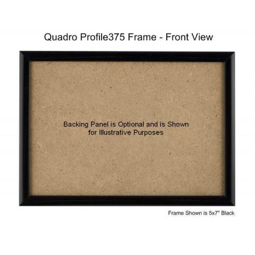 5x11 Picture Frame Profile375