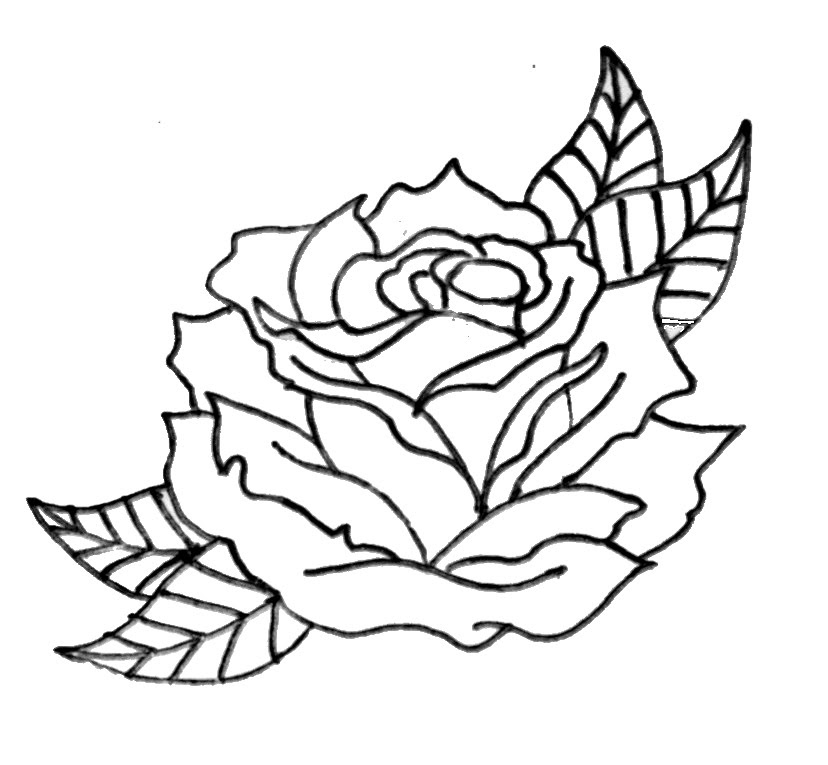 Free Rose Drawing Outline Download Free Clip Art Free Clip Art On Clipart Library
