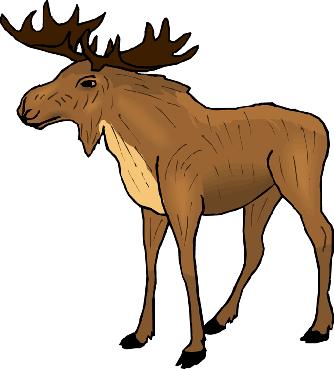 Free Moose Animal Cliparts Download Free Clip Art Free Clip Art On