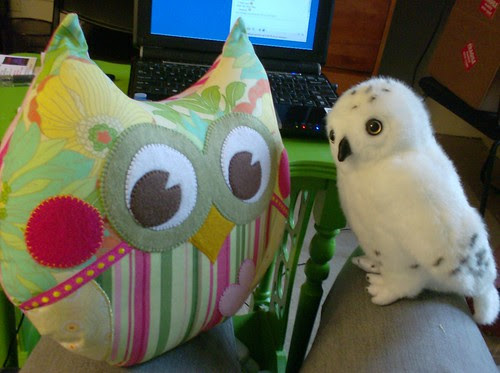 Owly and Kirby stuffed owl plushies together snowy owl and colorful fabric owl