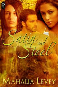 Satin and Steel Cover photo Satin-and-Steel200x300.jpg