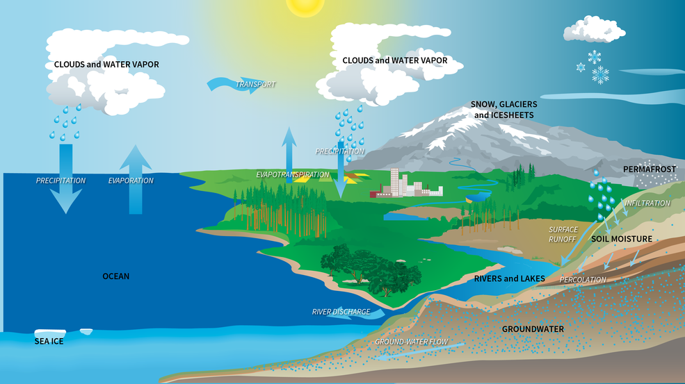 graphic depicting components of Earth's water cycle