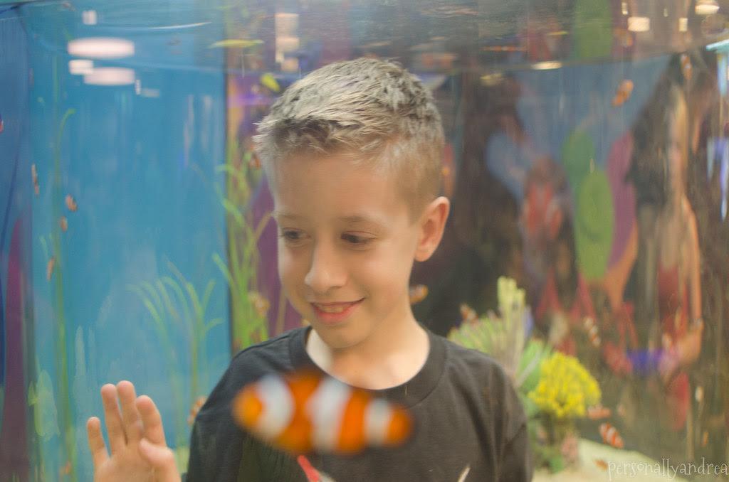 Ripley's Aquarium | personallyandrea.com