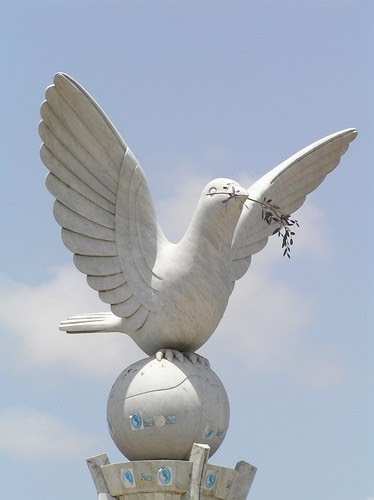 peace dove by Jeff Attaway