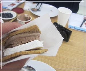 「ハーゲンダッツ スプーンテイスティングレッスン」にて、これは「チョコブラ・スモア」