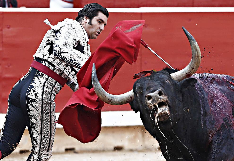 """El torero Morante de la Puebla entra a matar a su primero de la tarde durante la cuarta de abono de la Feria del Toro de los Sanfermines 2013 donde compartió cartel con Julian López """"El Juli"""" y Alejandro Talavante. EFE"""