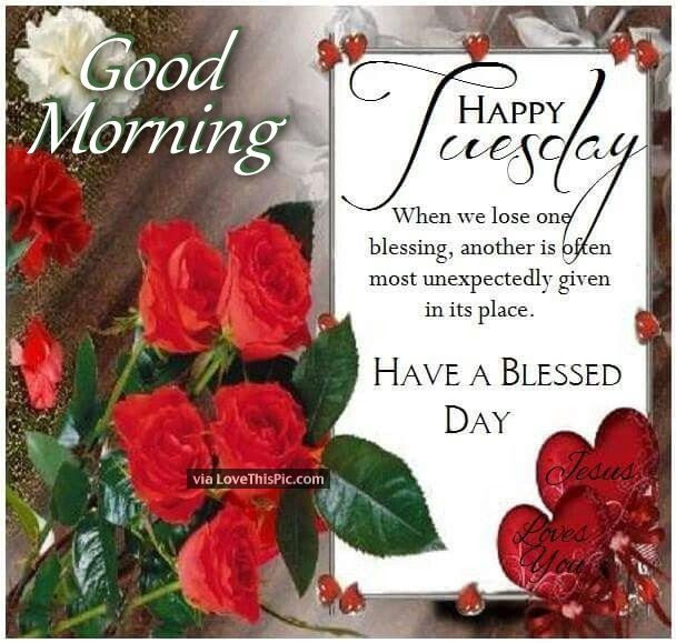 Good Morning Happy Tuesday Have A Blessed Day Quote With Roses
