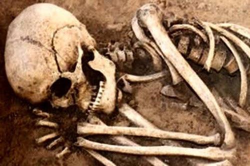 Paranormal Games Dry Bones