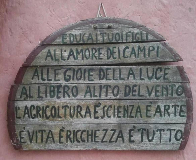 Ecologia profonda, bioregionalismo e biologia facile facile...