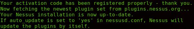 Actualizando plugins nessus