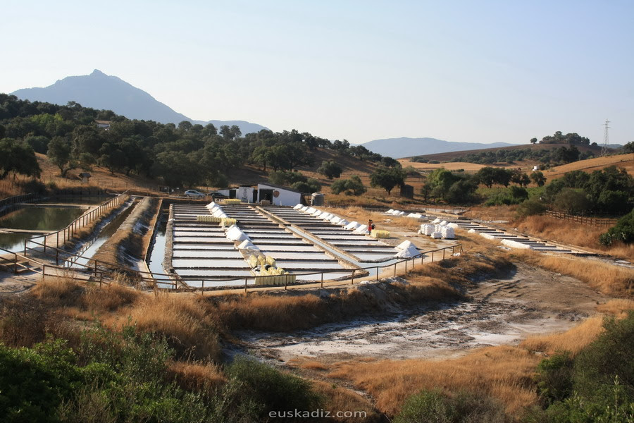Resultado de imagen de Salinas Romanas de Iptuci