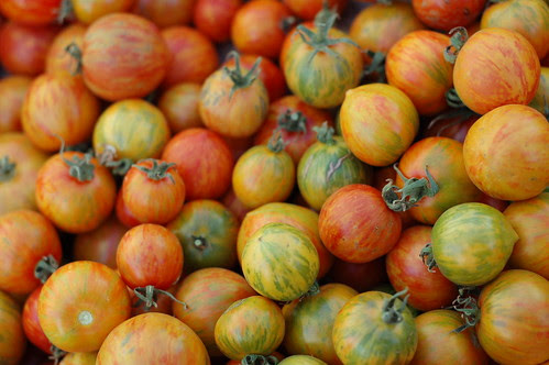 Tomatoes, dry farmed