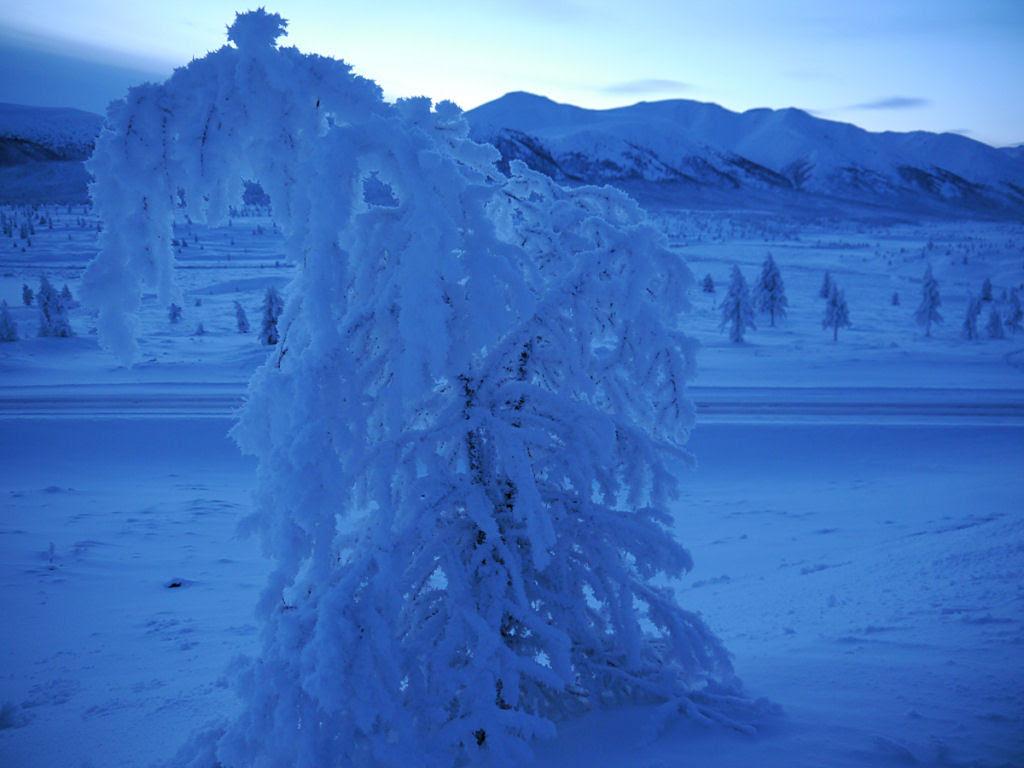 Conheça Oimekon, o povoado mais frio do planeta 26