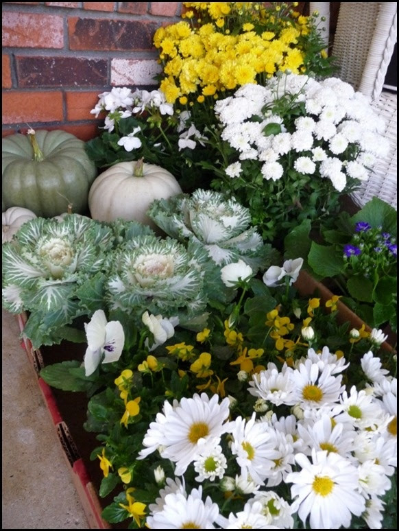 Fall Plantings from Halfmoon Bay  http://goodlifeofdesign.blogspot.com/2012/10/i-am-going-to-be-busy-girl_1.html