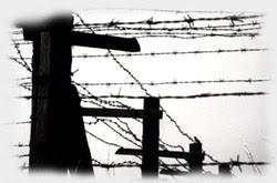 Journée de la mémoire de l'Holocauste et de la prévention des crimes contre l'humanité