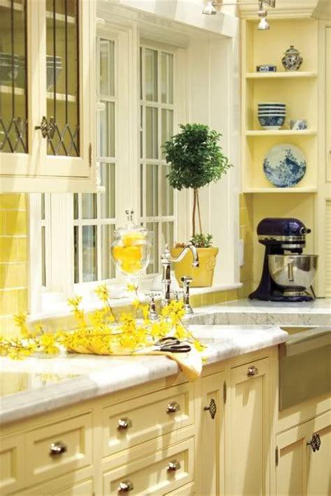 timeless  beautiful kitchen colour schemes