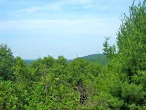 Tucker Hill First Hill of 6-26-10 Hike in blue Hills