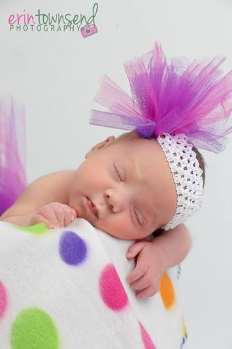 violet 5
