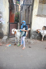 The Sacrificial Goat And The Girl Child by firoze shakir photographerno1