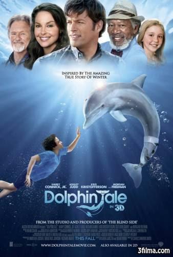 Взаимопомощь и природное обаяние(История Дельфина)