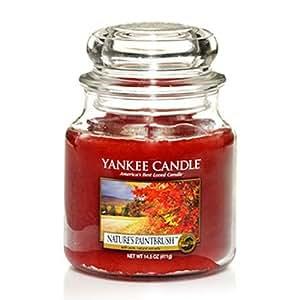 Yankee Candles Jar Candle (Medium) (Natures Paintbrush ...