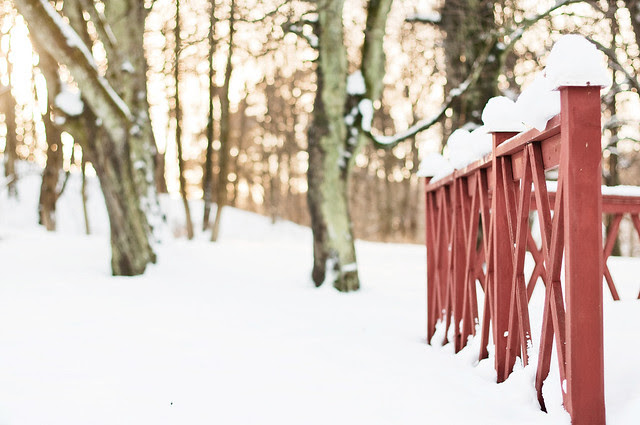 The red fence and winter light