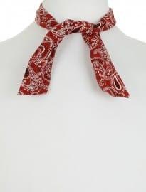 Topman Paisley Necktie