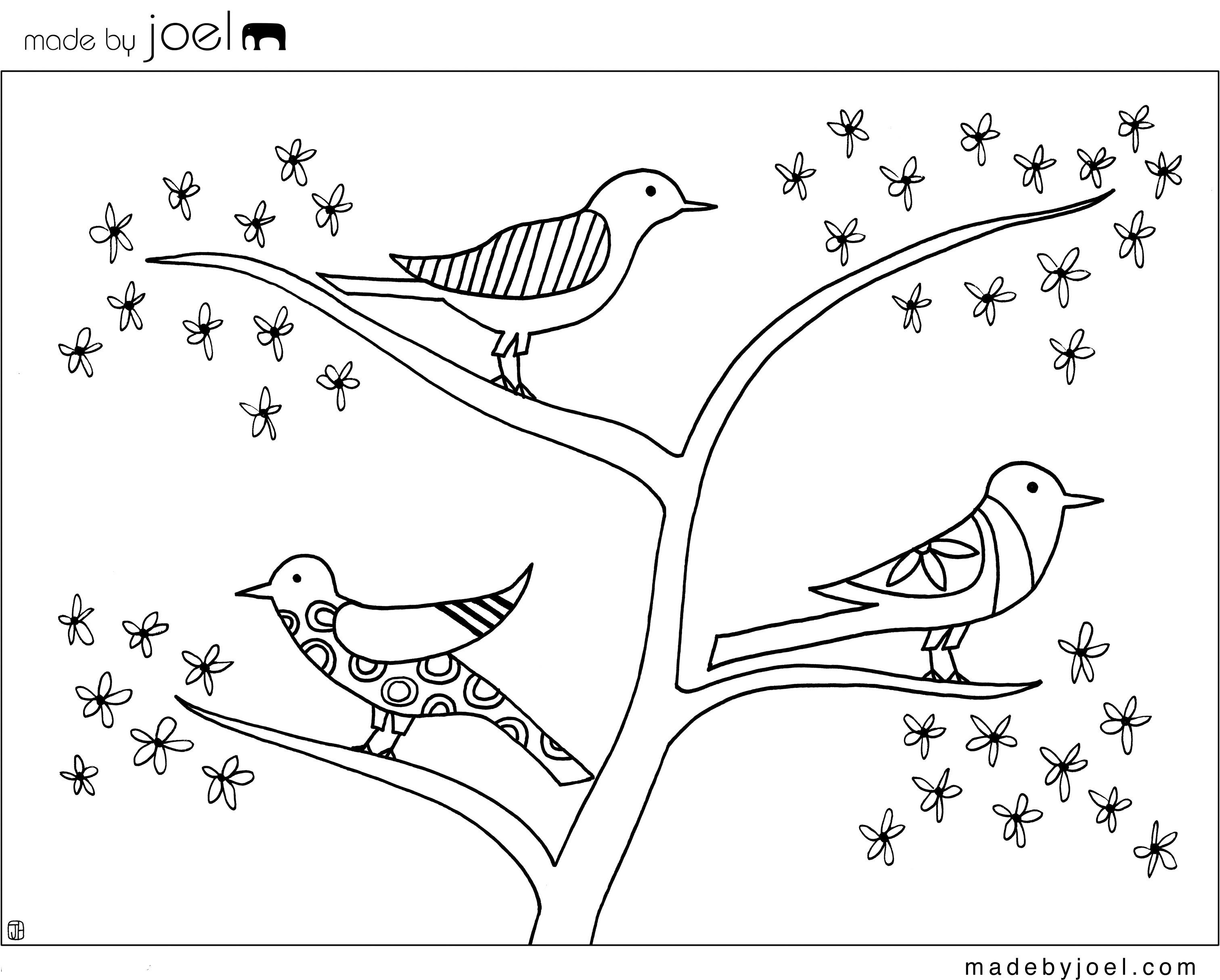 Birds Coloring Worksheet