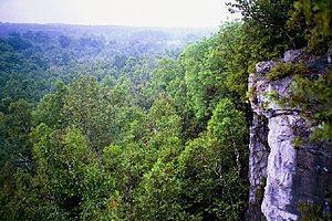 View from the Niagara Escarpment along the Bru...