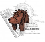 Pont-Audemer Spaniel Dog Scrollsaw Intarsia-Yard Art Woodworking Plan - fee plans from WoodworkersWorkshop® Online Store - Pont-Audemer Spaniel Dogs,pets,animals,dog breeds,yard art,painting wood crafts,scrollsawing patterns,drawings,plywood,plywoodworking plans,woodworkers projects,workshop blueprints