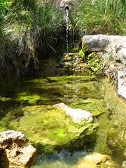 Font de Sanxo
