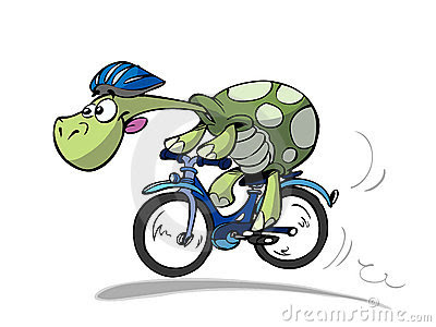 Image result for fun animal cycling