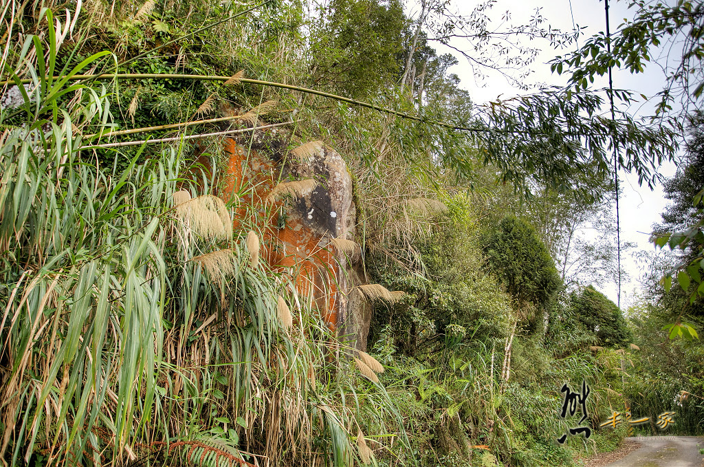 奮起湖石棹景點|龍雲休閒農場森林步道|鐵達尼石 五彩石