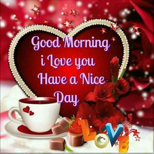 Good Morning I Love You Have A Nice Day Pictures Photos And Images