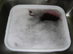 Second Woolite Bath