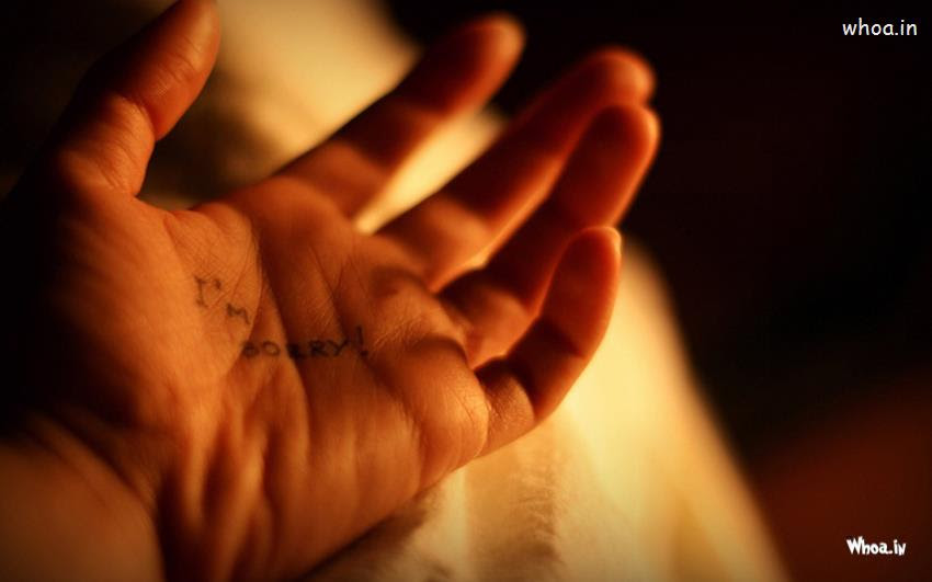 I Am Sorry Write In Hand Hd Wallpaper