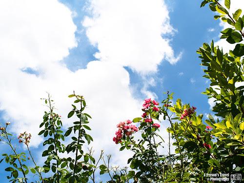 2012_Summer_Kansai_Japan_Day6-24