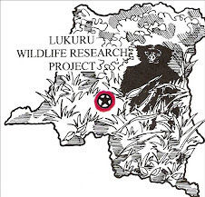 Click Picture to View Lukuru Wildlife Research Project Blog