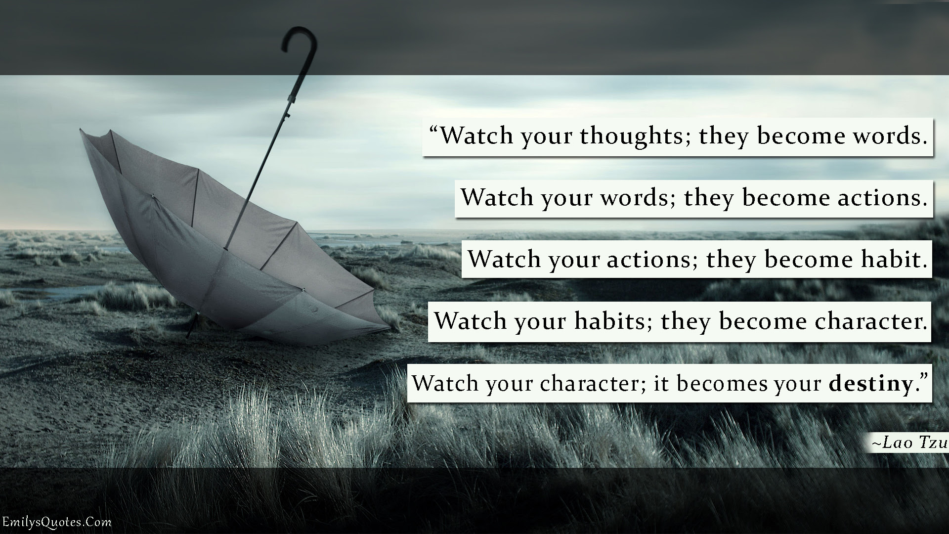 Destiny Popular Inspirational Quotes At Emilysquotes