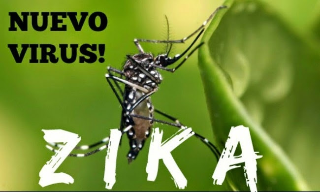 1451372300_benh-do-vi-rut-zika