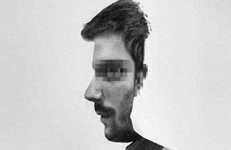画像これが横顔に見えたら男脳正面の顔にみえたら女脳