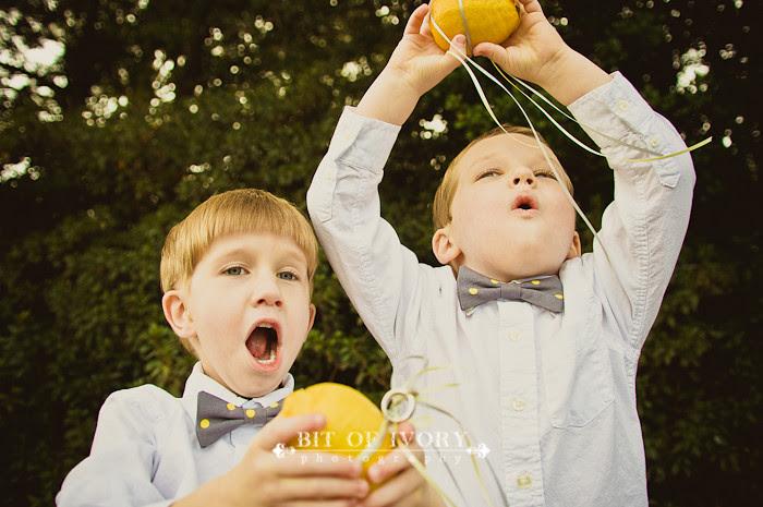lemon ringbearers